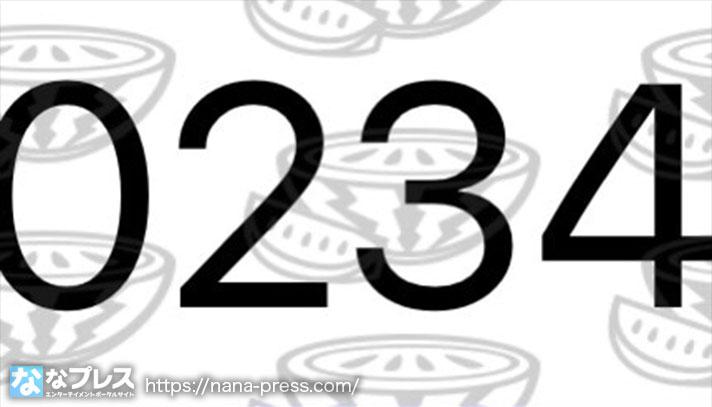 抽選番号234番